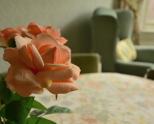 Flower on table